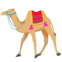 Camel in English