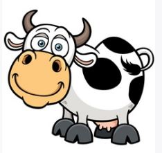 cow in english