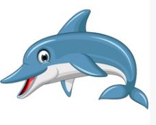 Dolphin in English