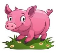 Pig in English